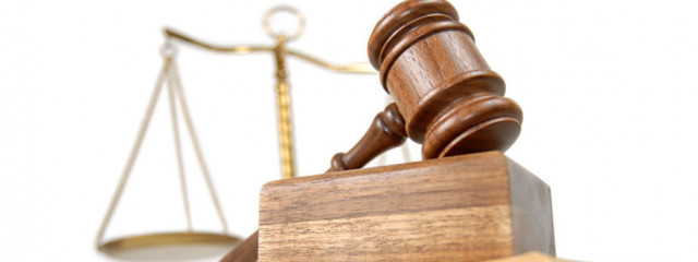 Пользователи Яндекса стали на 9% чаще интересоваться законами