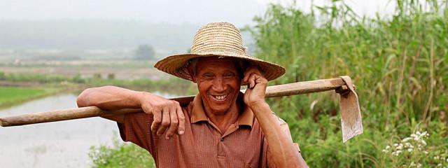 Китайские крестьяне выйдут в онлайн