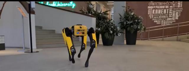 «Сбер» купил и показал робота-пса от Boston Dynamics